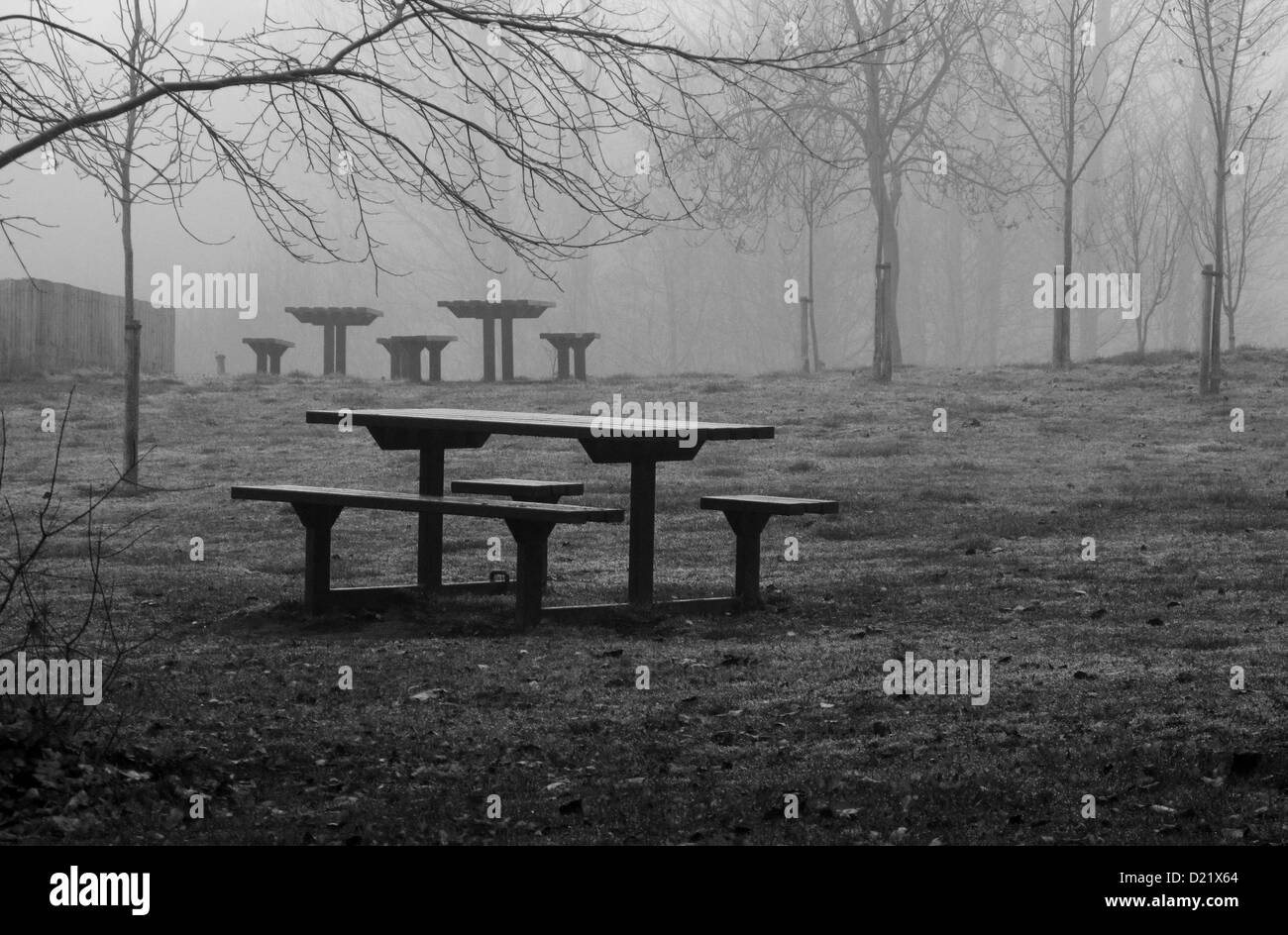 Picnic tables stand deserted in a wintry. foggy, park. Resembling ancient standing stones, the tables have no cust - Stock Image