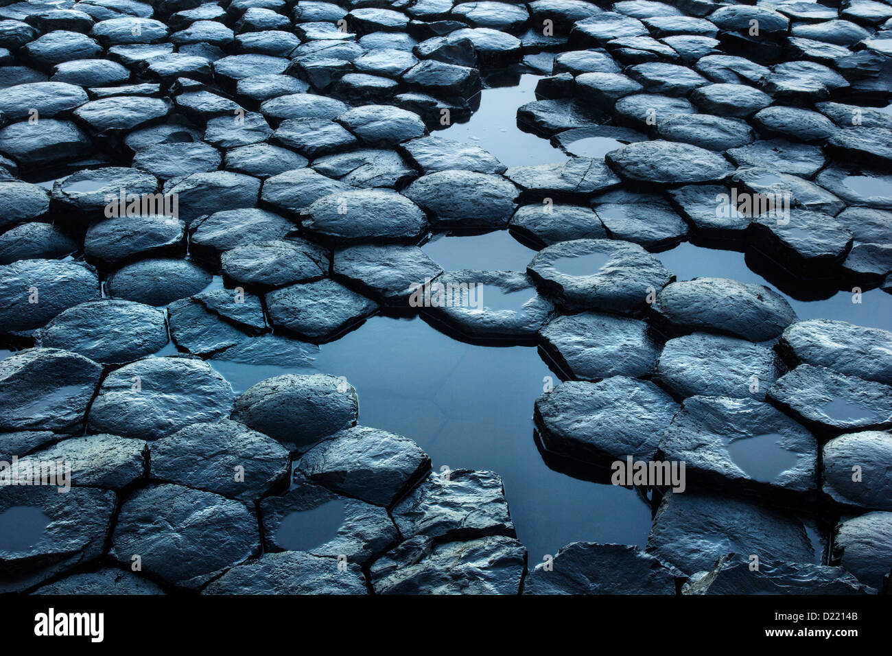 Details of the hexagonal basaltic rocks pattern from the famous Giant's Causeway UNESCO world heritage site - Stock Image