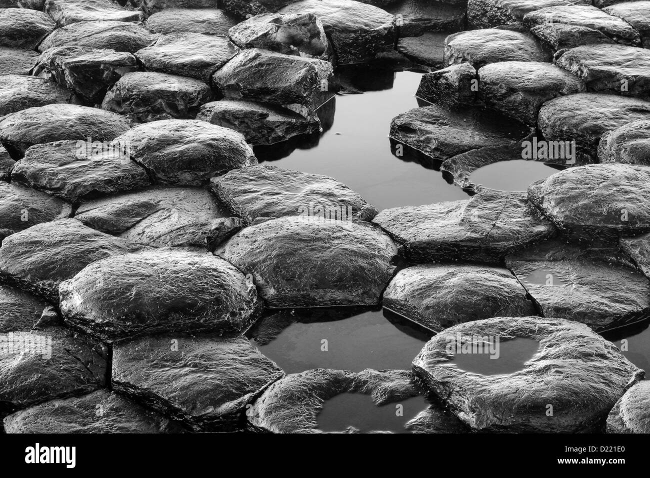 Monochrome details of the texture of the hexagonal basaltic rocks pattern from the famous Giant's Causeway, - Stock Image