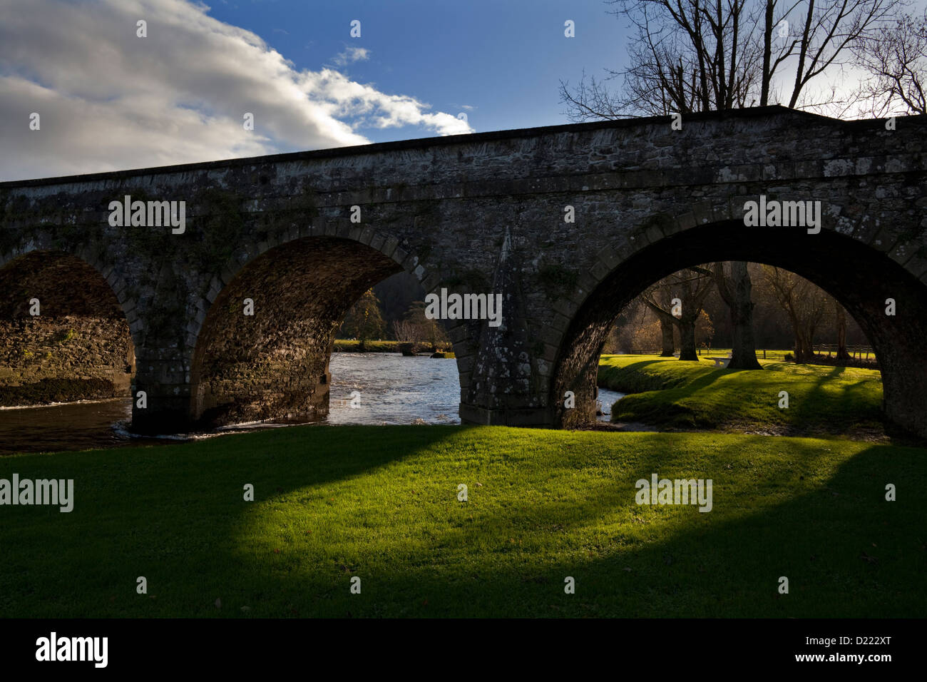 The Bridge over the River Nore, Inistioge, County Kilkenny, Ireland - Stock Image