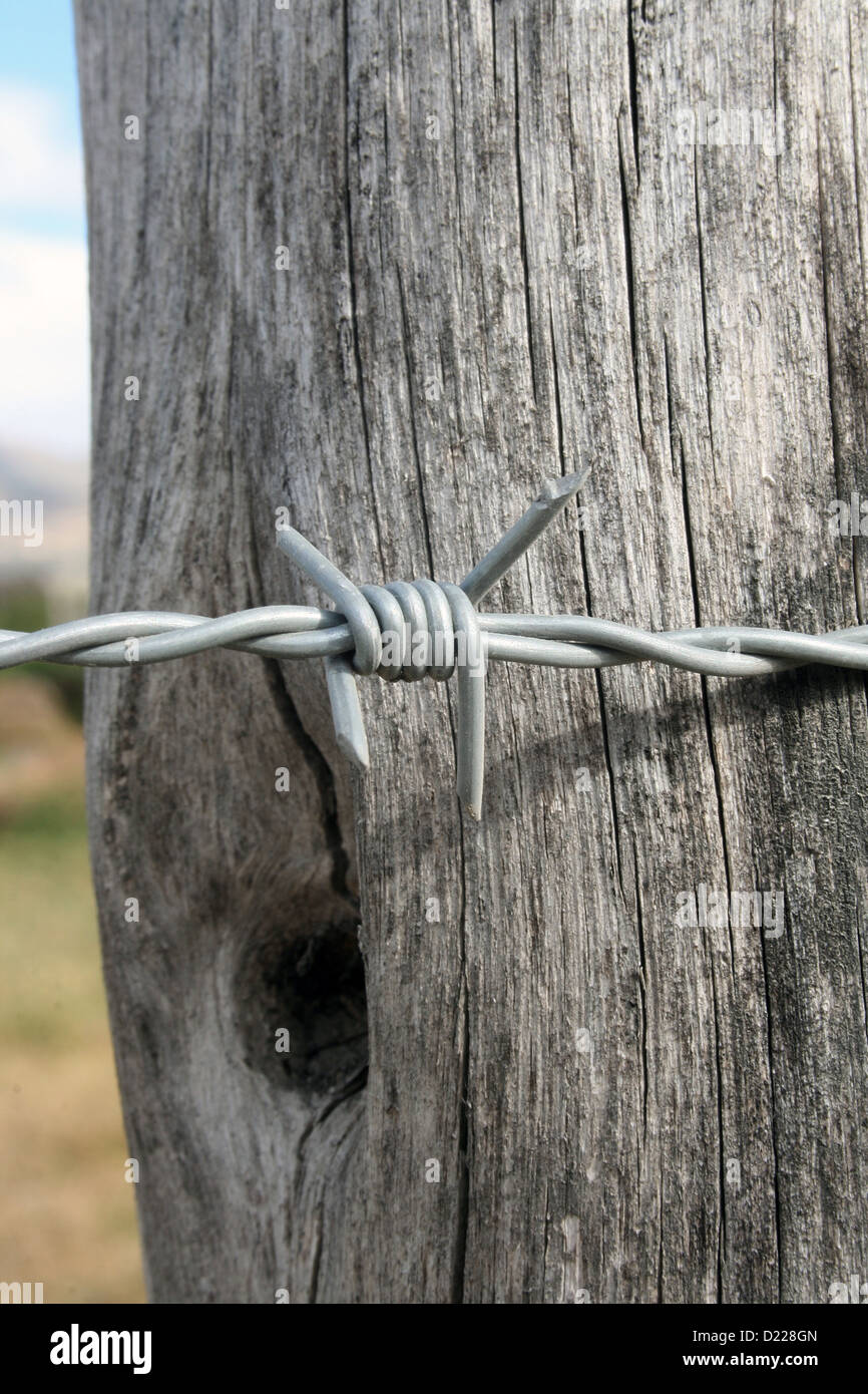 A strand of barbed wire attached to a fence post in a farmers ...