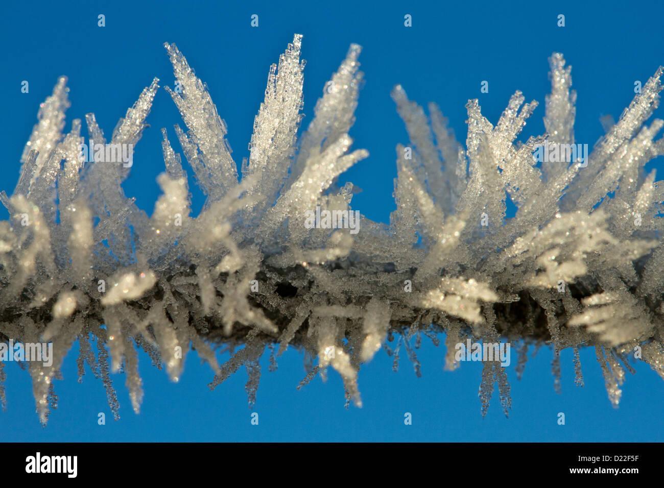 Frosty fence - Stock Image