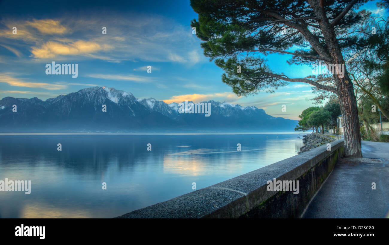 The shore of Lake Geneva or Lake Leman - Stock Image