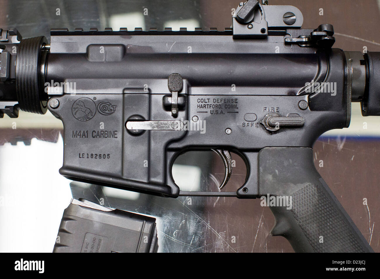 A Colt Defense M4A1 Carbine assault rifle on display at a gun shop with high capacity 30 round magazines.  - Stock Image