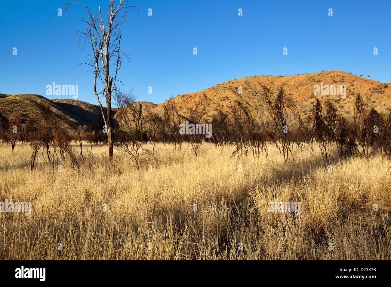 East MacDonnell Ranges landscapes - Stock Image