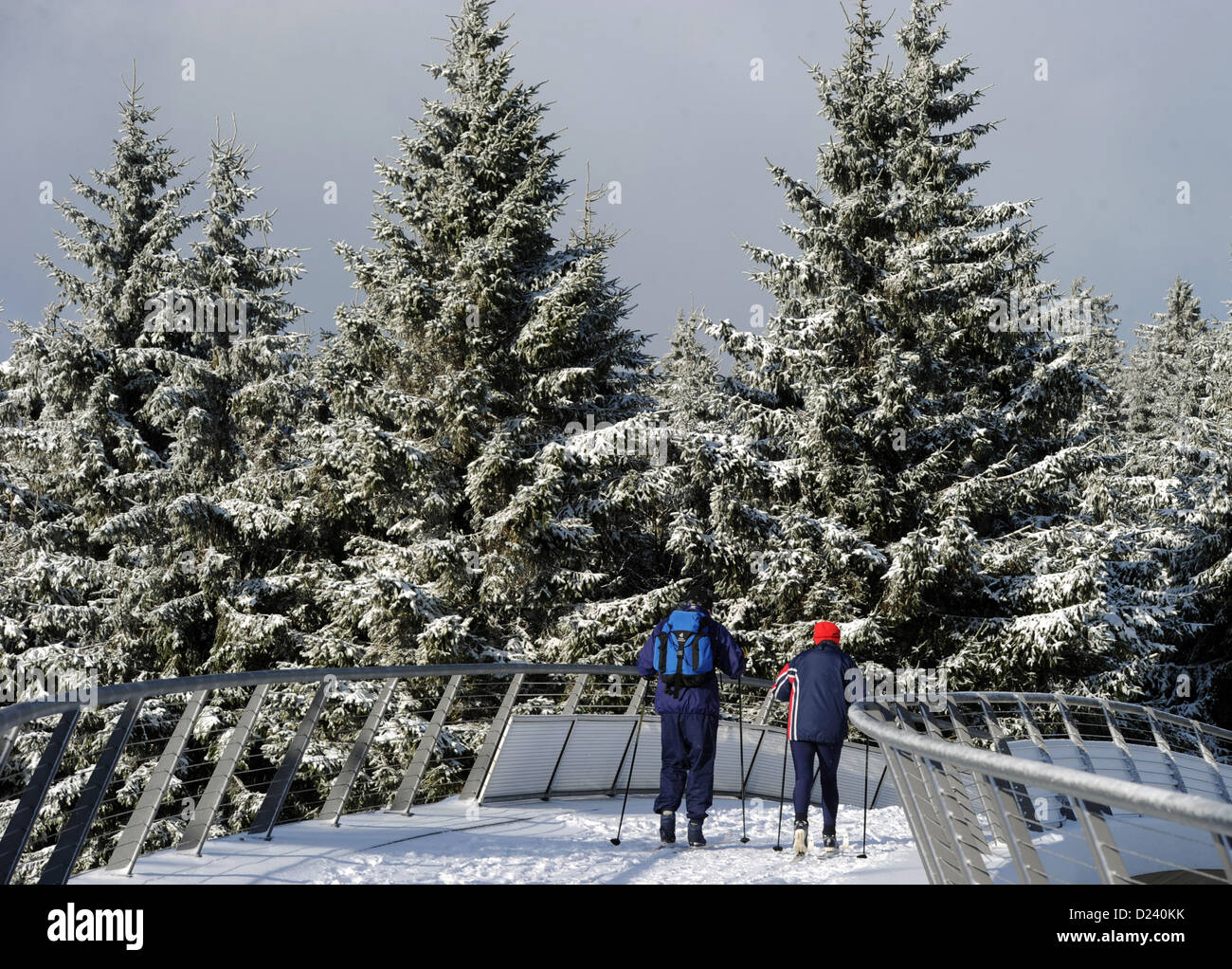 Hikers walk over a snowed-in bridge near Oberhof, Germany, 11 January 2013. Winter returned to the Thuringian Forest - Stock Image