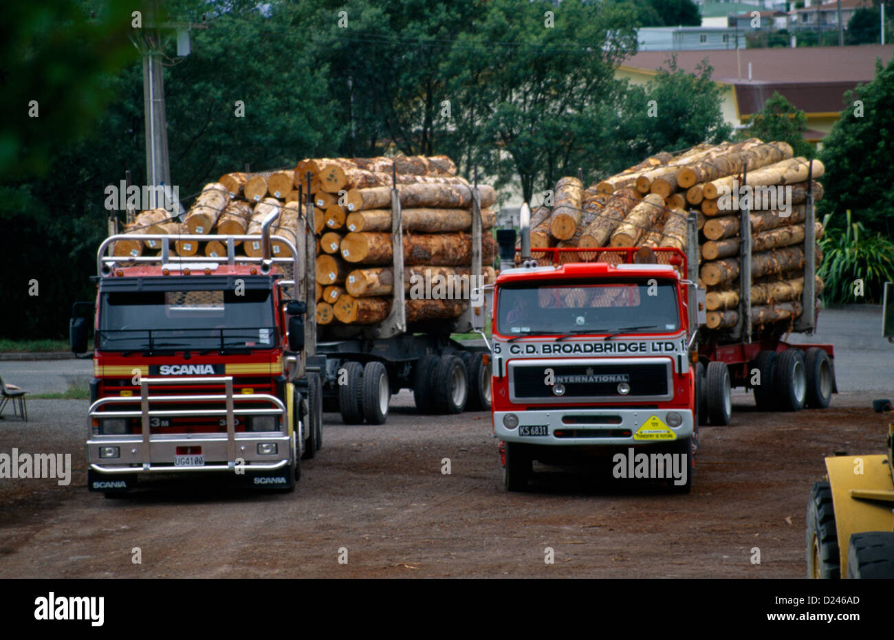 New Zealand Picton Wood Exports - Trucks Carrying Timber Logs - Stock Image