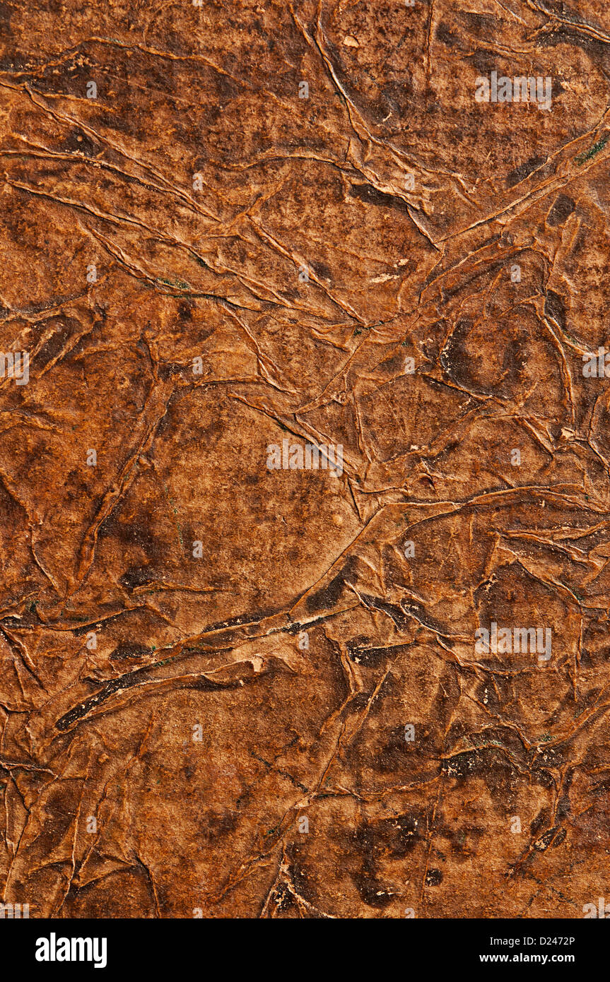 old wrinkled leather background - Stock Image