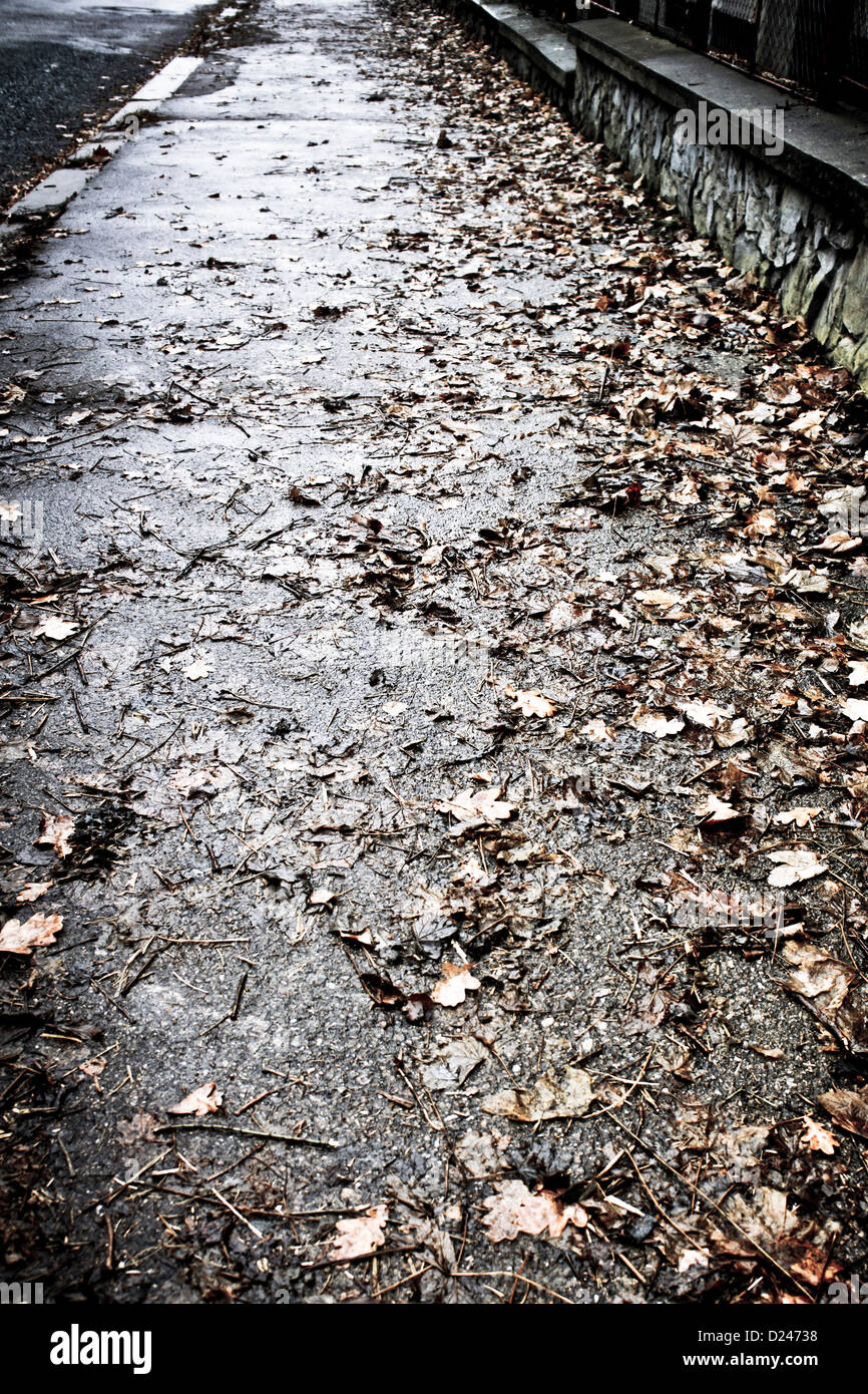 sidewalk with fallen leaves - Stock Image