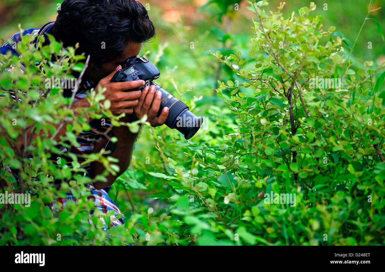 Photographer,Camera,Filming,'SLR Camera', photo shoot,Photo shoot,Reportage,Broadcasting,Photographic themes,Occupation - Stock Image