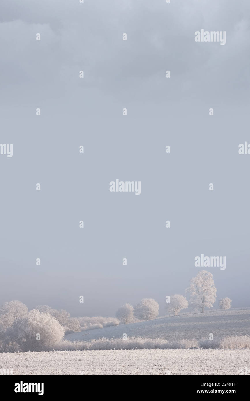 Frosty Winter Background - Stock Image