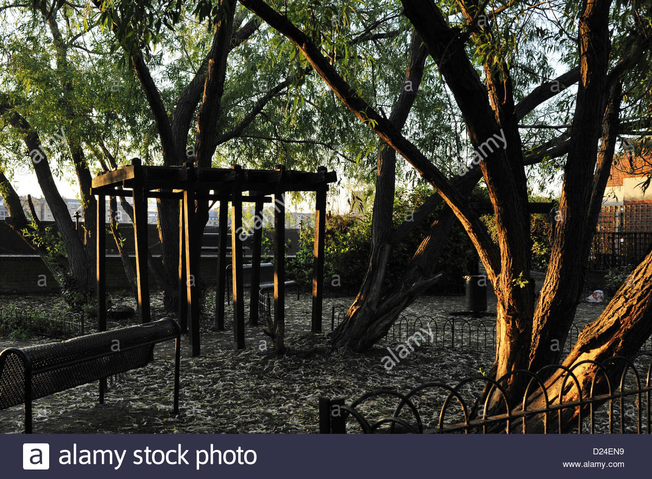 Phenomenal Wooden Pergola Bench Trees Covered Resting Area In Forskolin Free Trial Chair Design Images Forskolin Free Trialorg