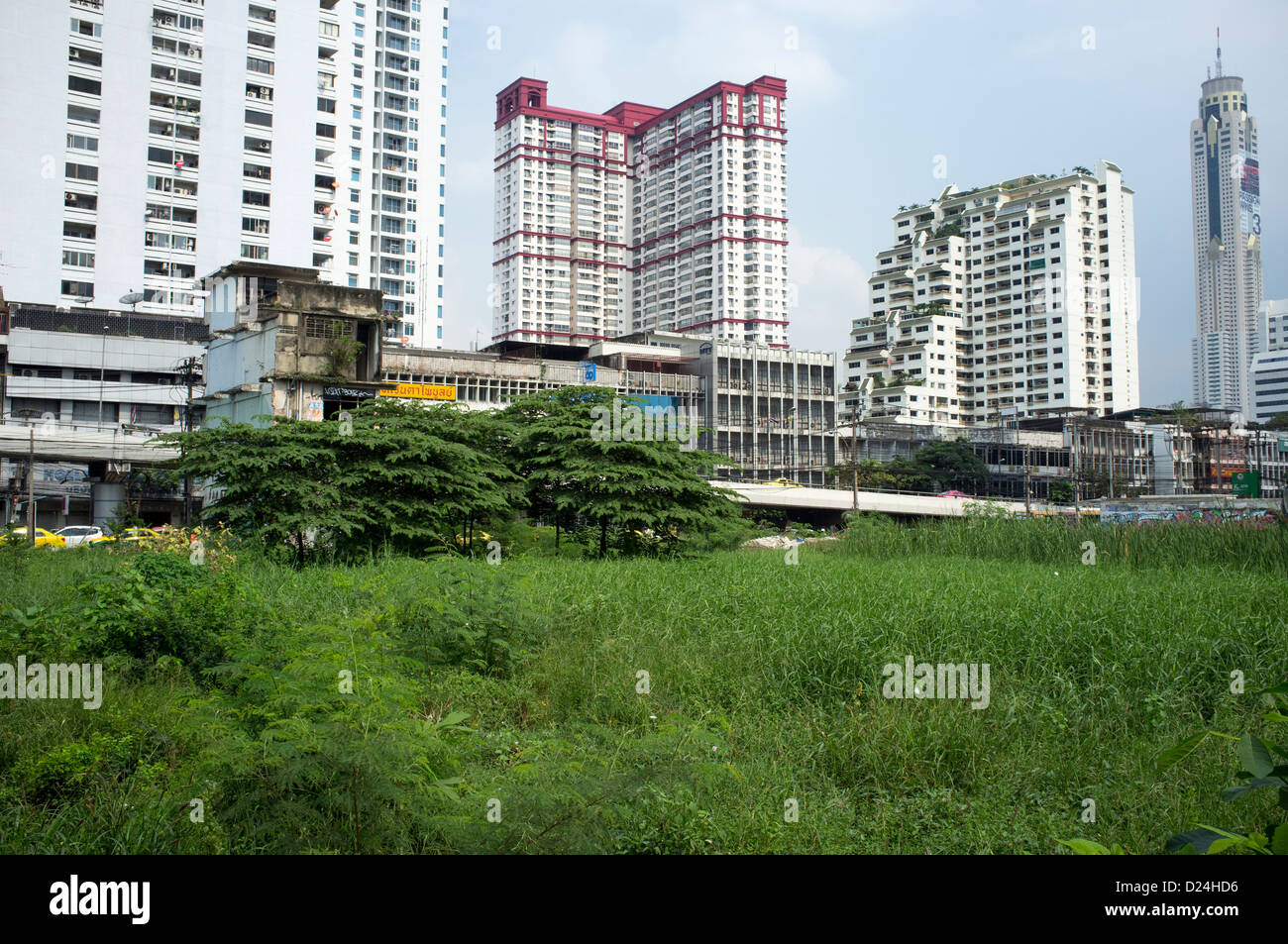 Open space or vacant overgrown lots amongst office building in downtown Bangkok - Stock Image