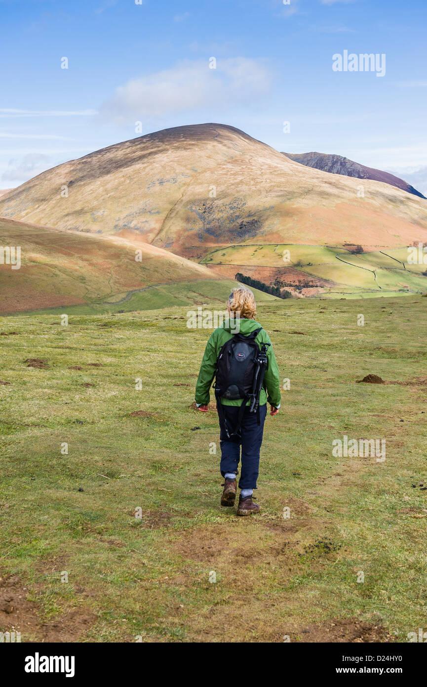 Woman walking with a mountainous backdrop, Near Keswick, Lake District, UK - Stock Image