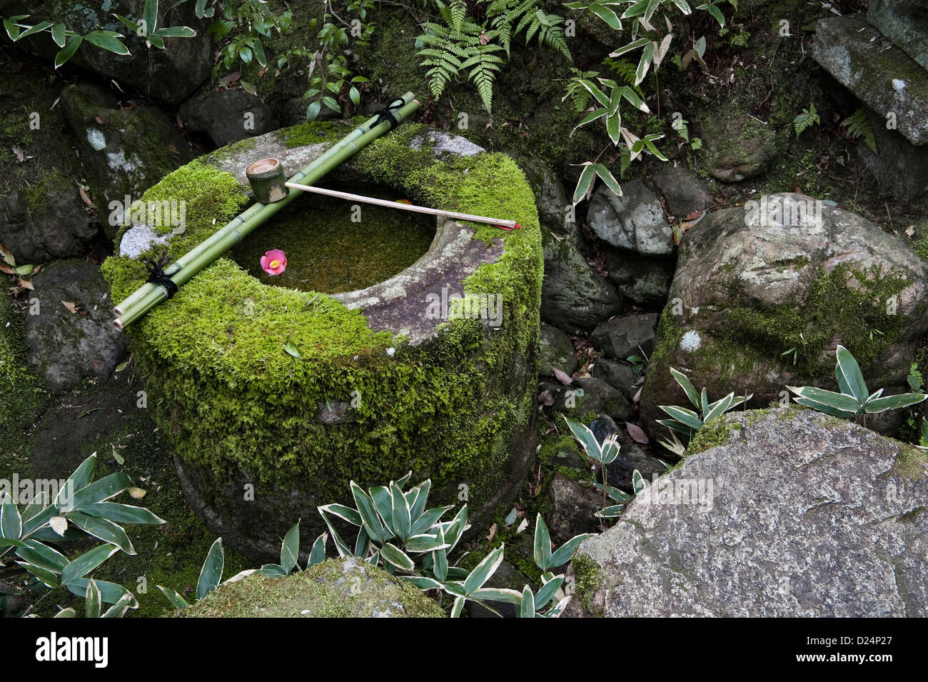 Kyoto, Japan. A tsukubai or water basin for ritual washing or purification at Koto-in Temple Stock Photo