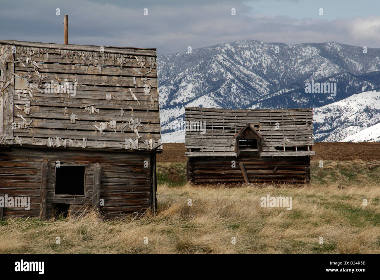 Mountains and Weathered old barn Rocky Mountains Montana storm cloud - Stock Image