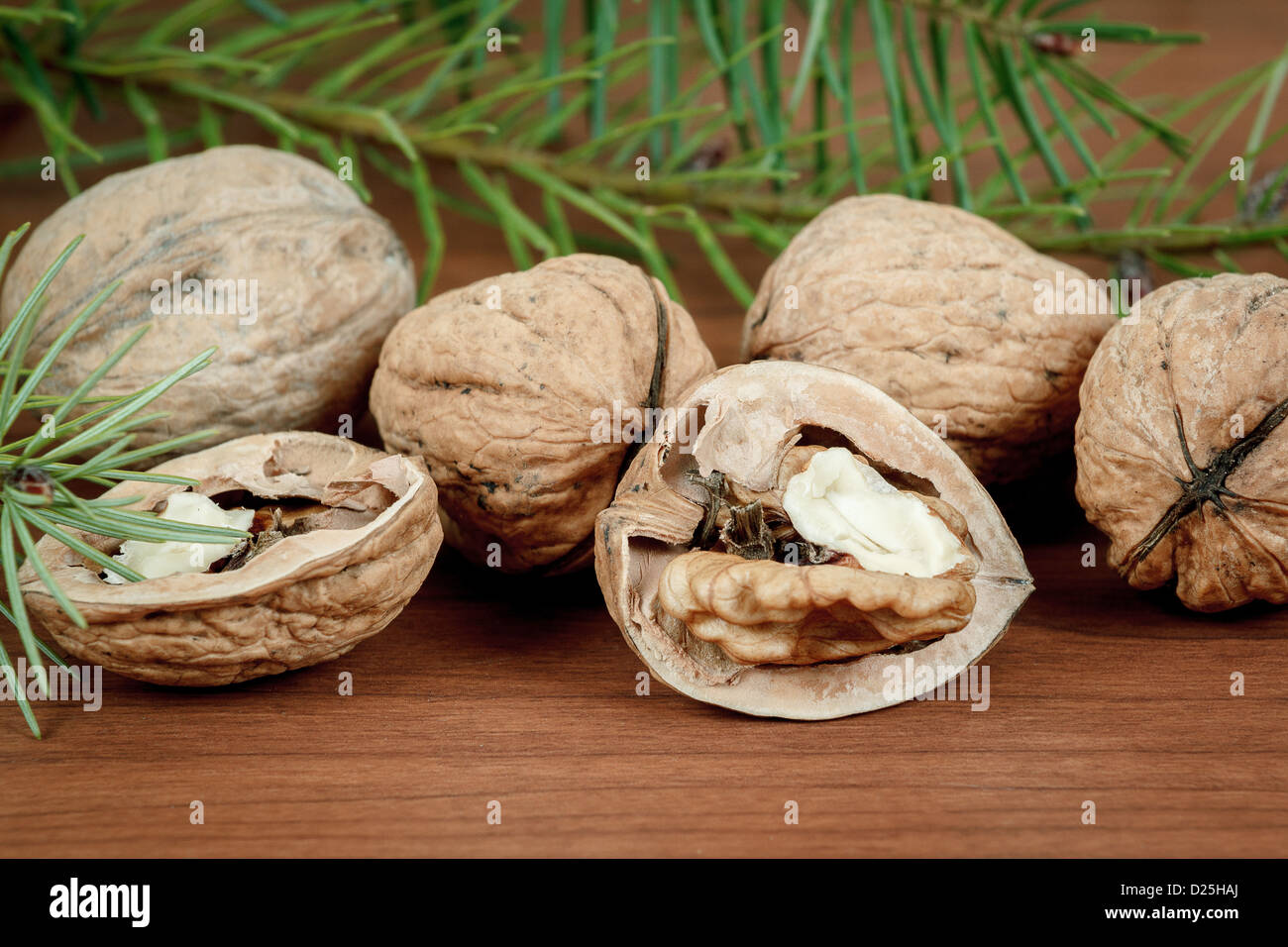 walnuts and a cracked walnut on wooden background with needles Stock Photo