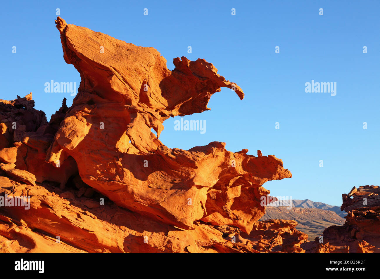 The Raptor, Little Finland, Hobgoblins Playground, Gold Butte Scenic Back Road, NV, USA - Stock Image