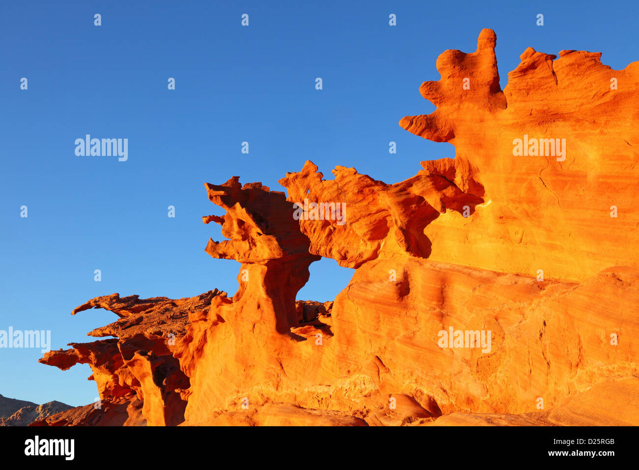 Little Finland, Hobgoblins Playground, Gold Butte Scenic Back Road, NV, USA - Stock Image