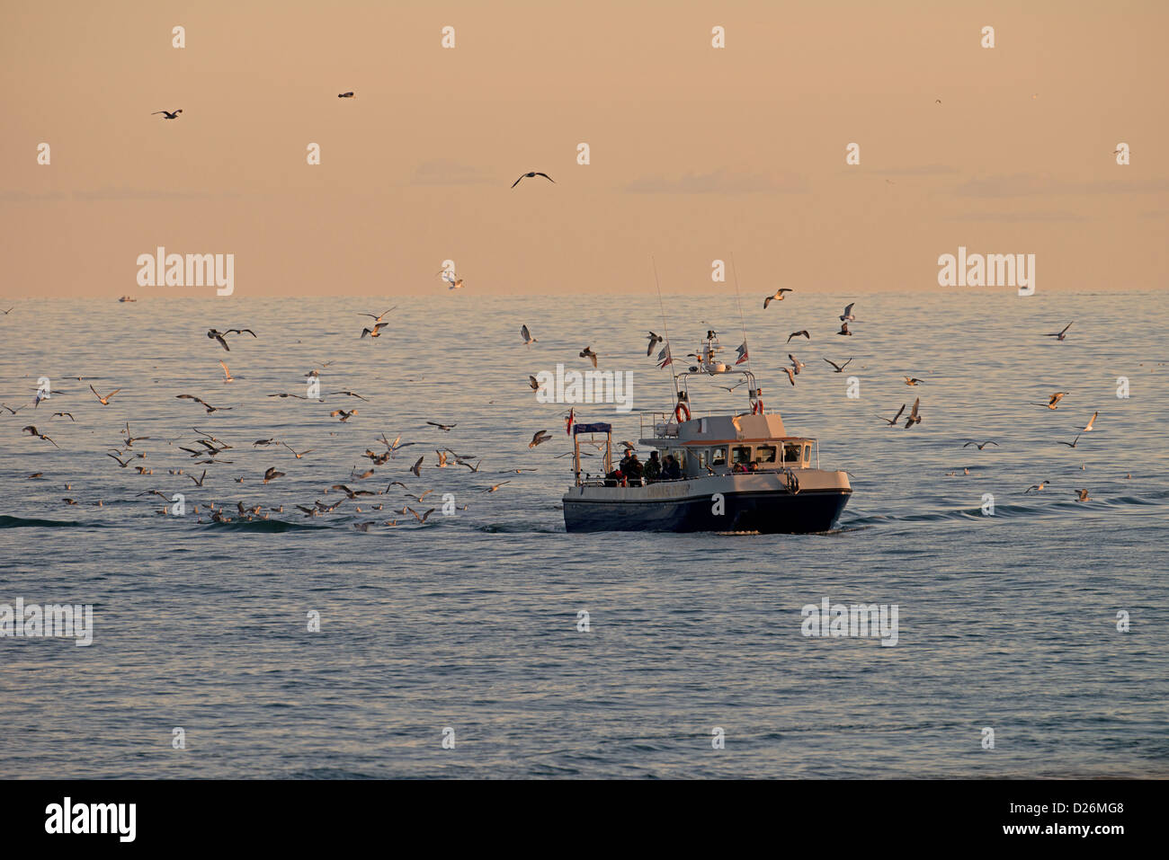 A DIVING BOAT COMING ASHORE FROM A DAYS FISHING. BRIGHTON MARINA. EAST SUSSEX UK - Stock Image