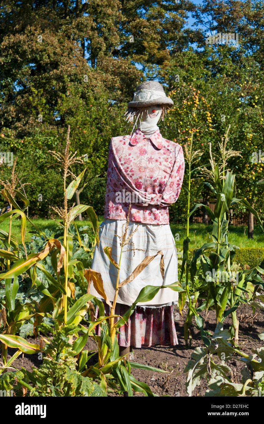 close up of a Lady scarecrow in a vegetable garden, England, UK, GB, EU, Europe - Stock Image