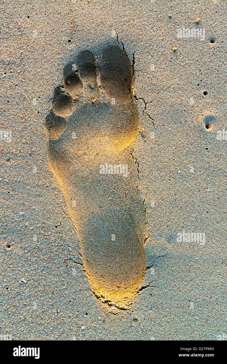 Footprint in sand on beach, close-up - Stock Image