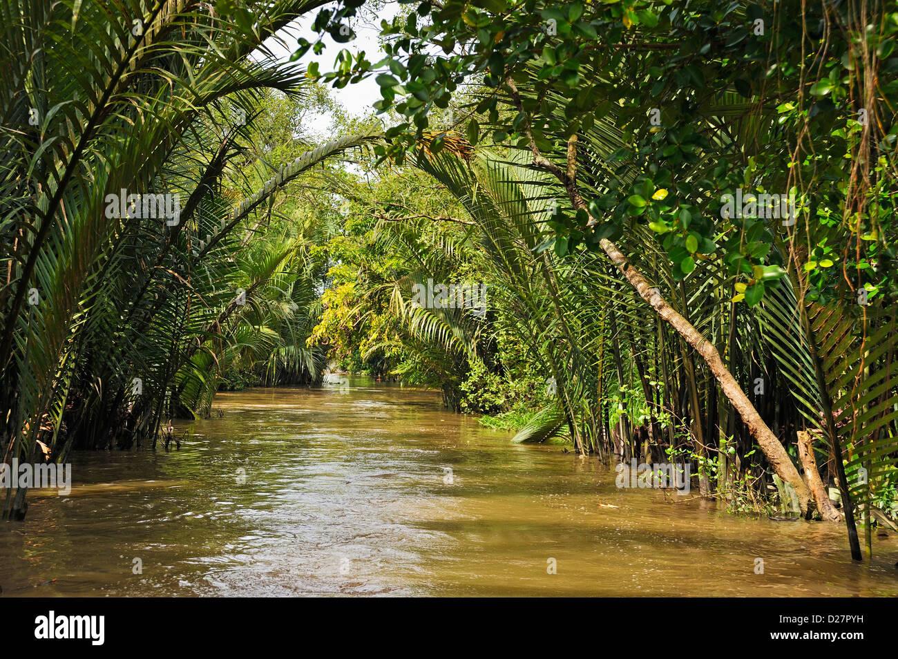 Mekong River, Vietnam - Stock Image