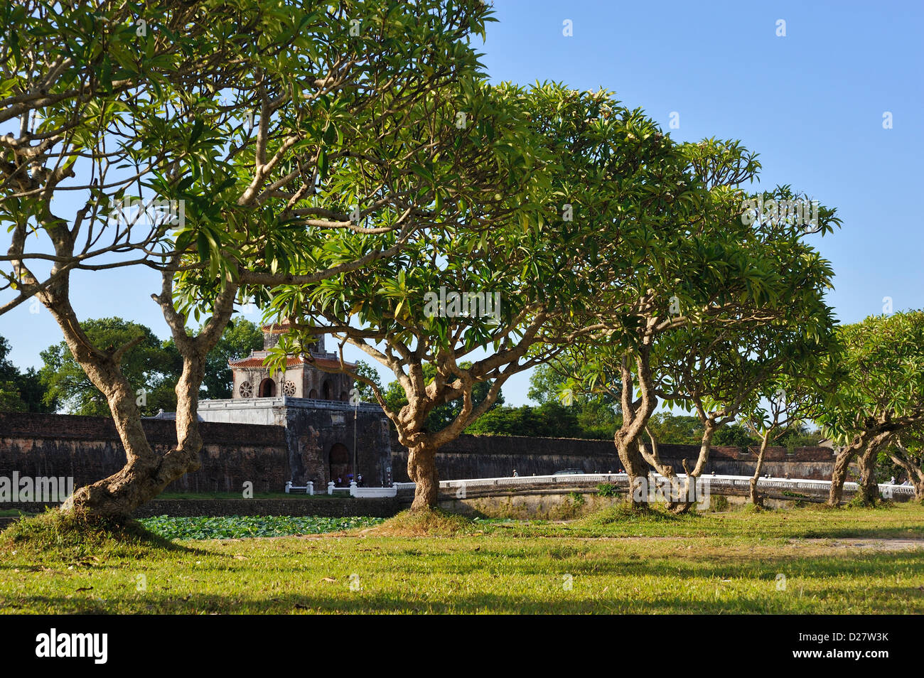 Trees by the moat around the Citadel of Hue, Vietnam with one of the gates in the background - Stock Image