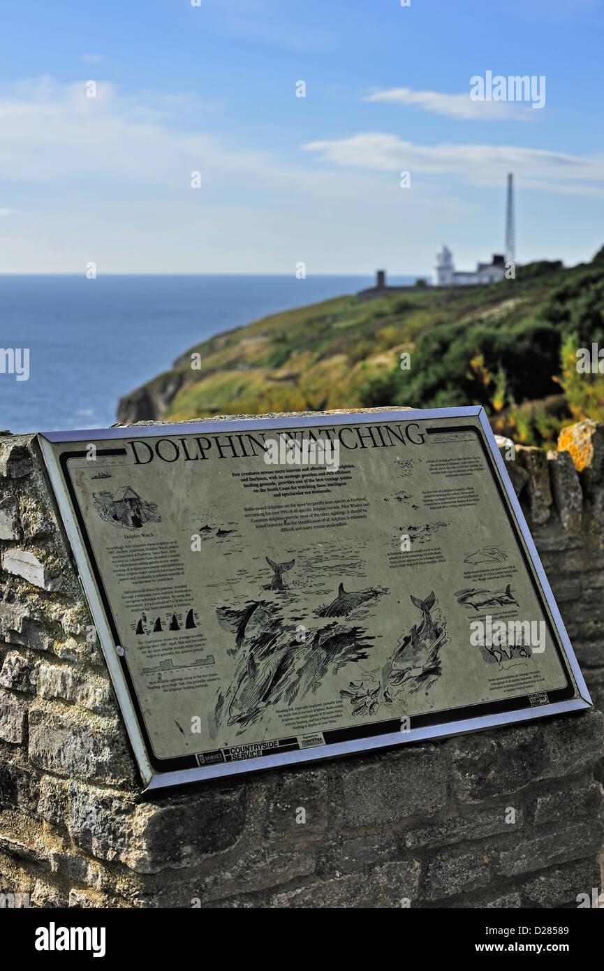 Dolphin watching information board at Durlston Head, Isle of Purbeck along the Jurassic Coast in Dorset, southern Stock Photo