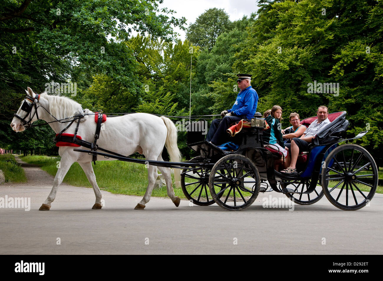 Sightseeing in a Hackney carriage i - Stock Image