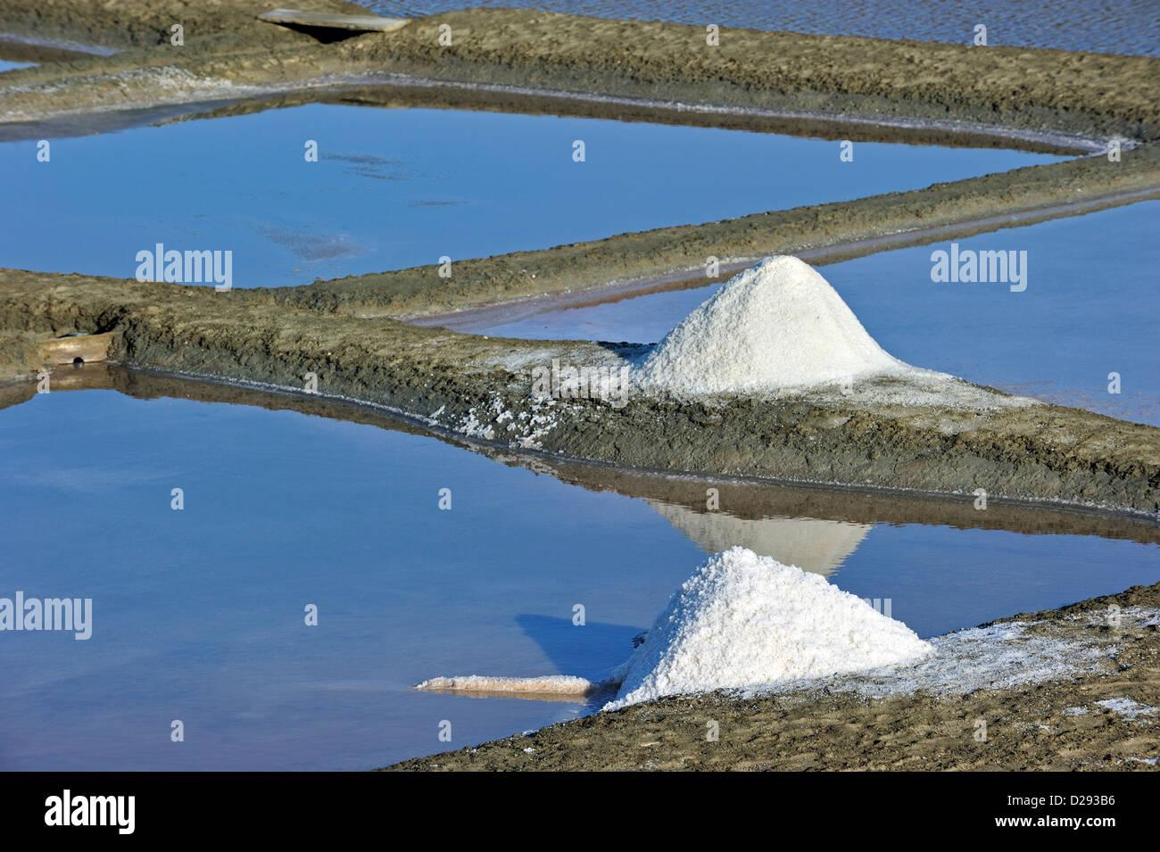 Salt pan for the poduction of Fleur de sel / sea salt on the island Ile de Ré, Charente-Maritime, France - Stock Image