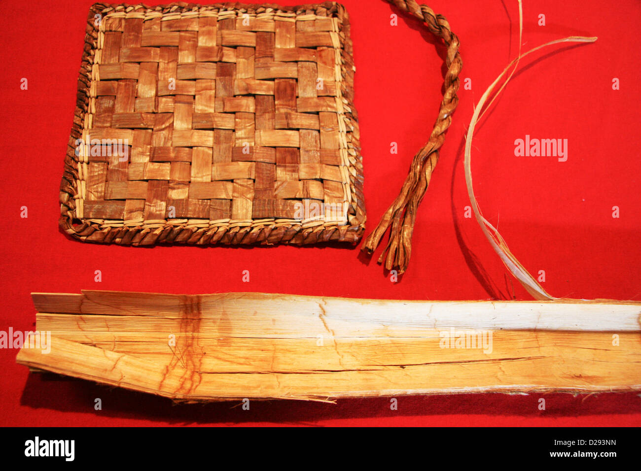 Cedar For Weaving At Xa:Ytem Longhouse Interpretive Centre, Mission, B.C., Canada - Stock Image