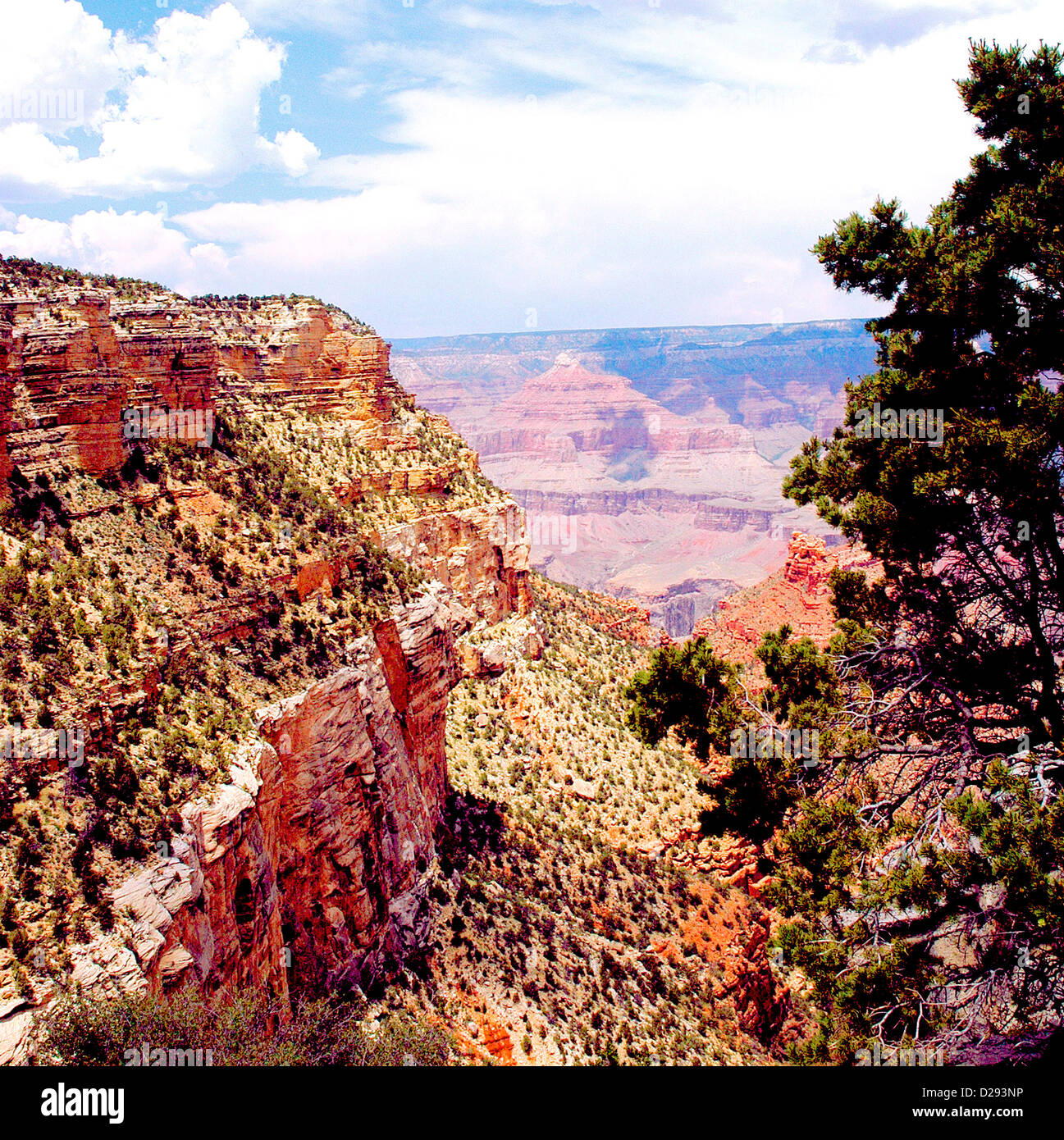 Grand Canyon, South Rim Geology - Stock Image