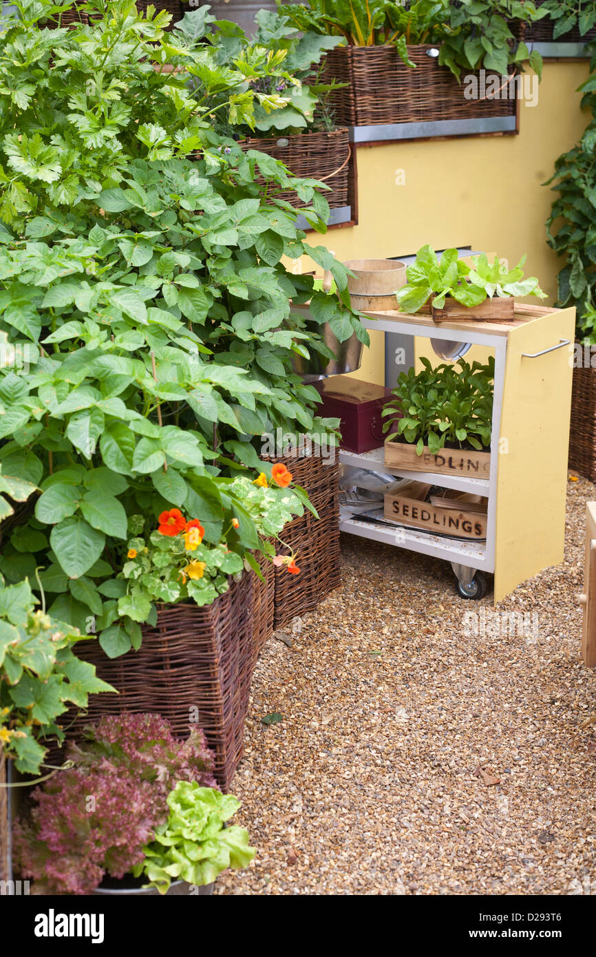 Contemporary Garden Design With Vegetables Growing In Raised