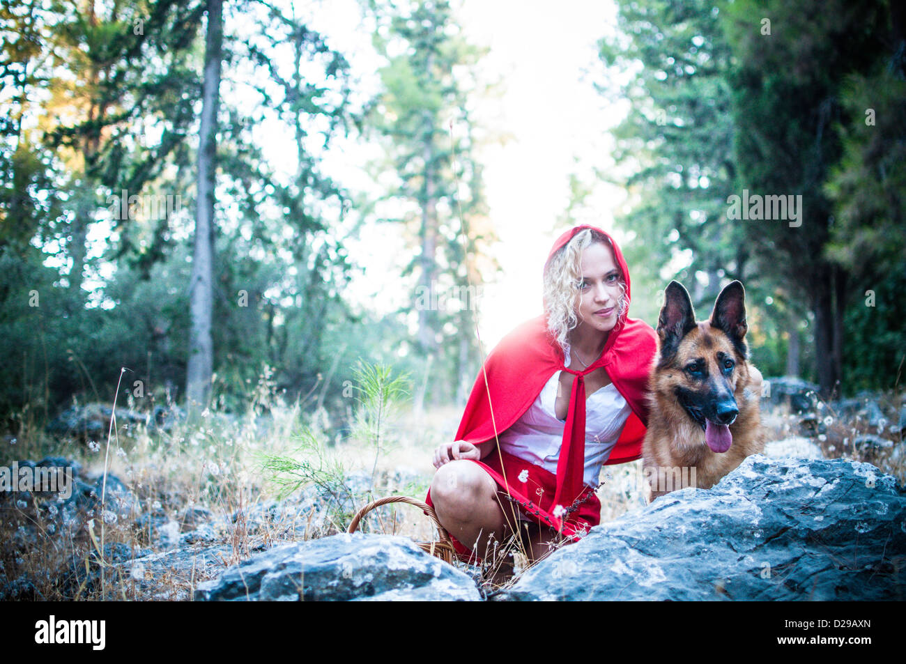 The Big Bad Wolf and Little red ridding hood in the forest - Stock Image