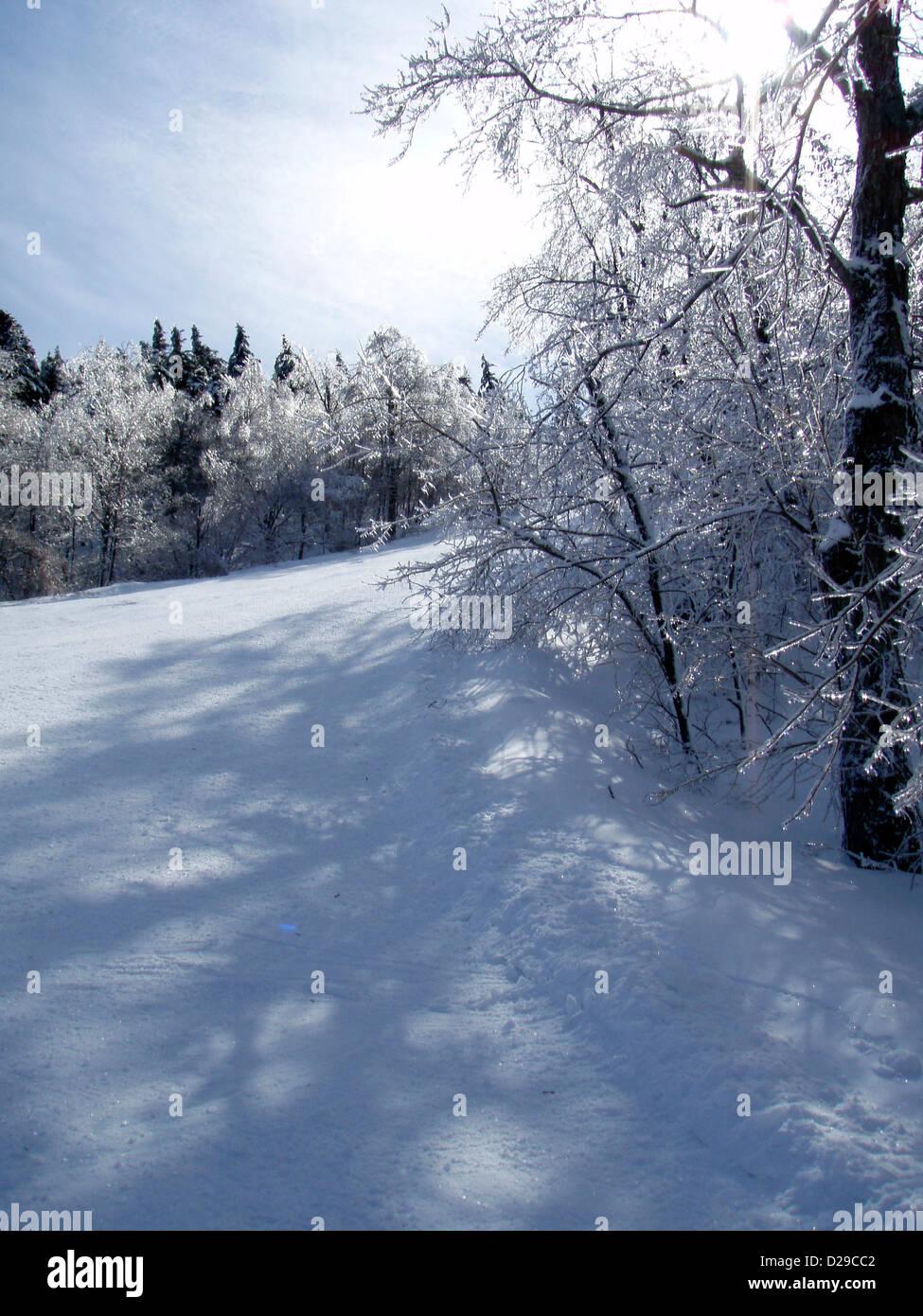 Ski scenery - Stock Image