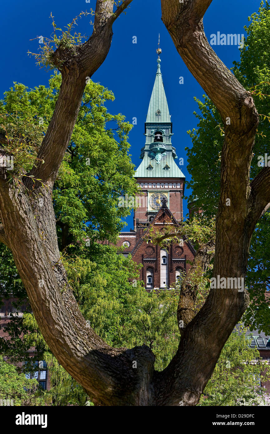 View to the tower of Copenhagen cit - Stock Image