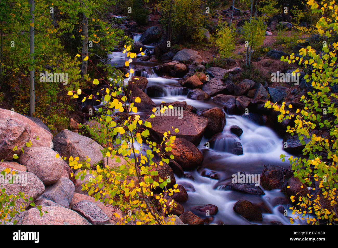 Geneva Creek snakes through Guanella Pass during Autumn in Colorado displaying a beautiful scenic - Stock Image