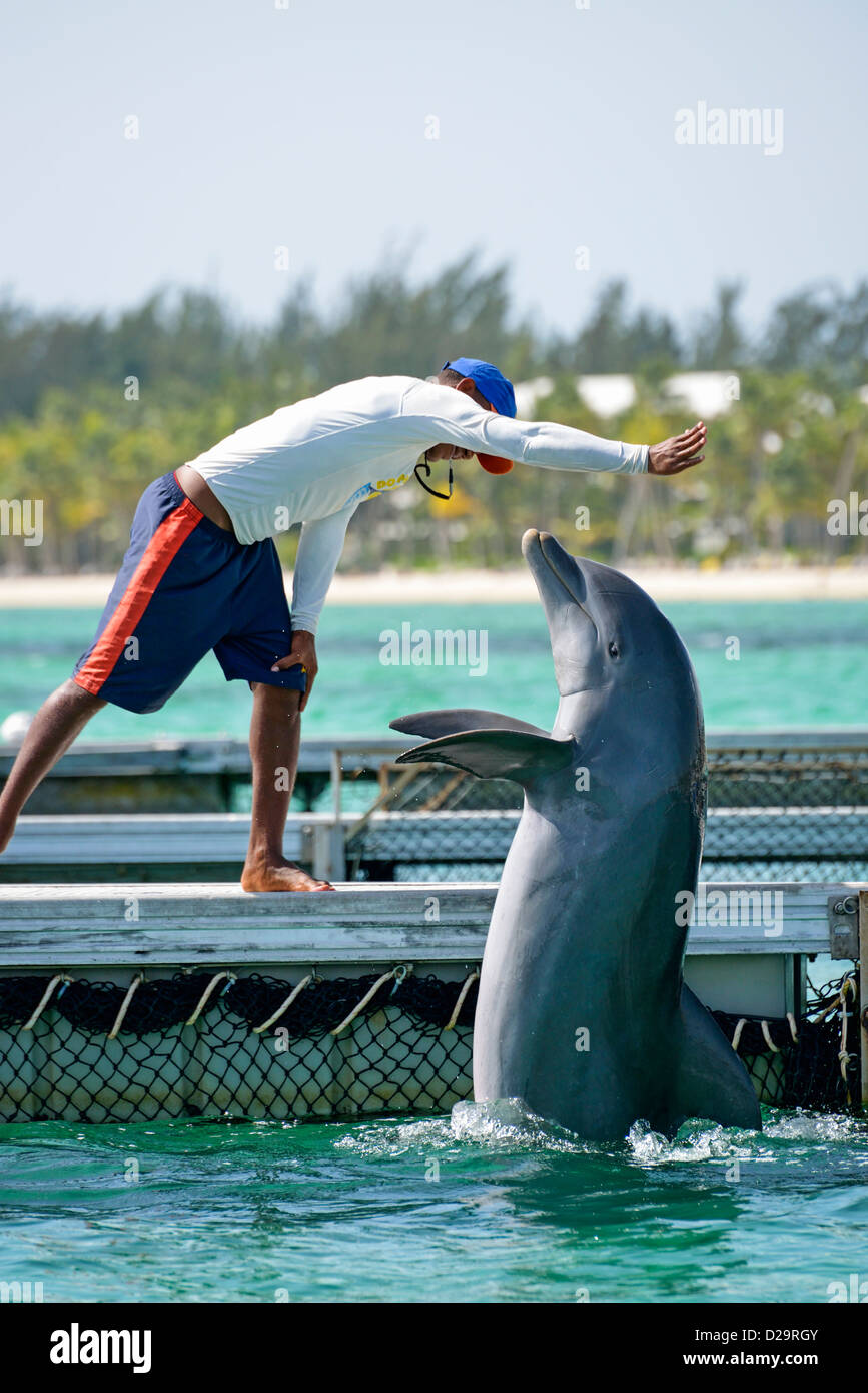 Man with bottlenose dolphin at the Dolphin Explorer centre, Punta Cana, Dominican Republic - Stock Image