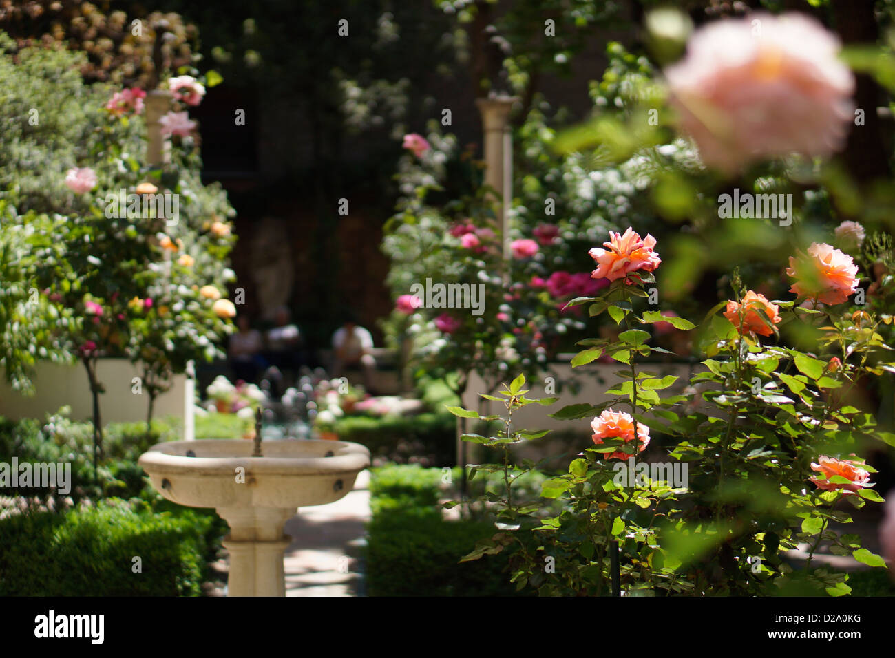 Museo Sorolla Madrid.Museo Sorolla Madrid Spain Museum Garden Rose Stock Photo 53080484