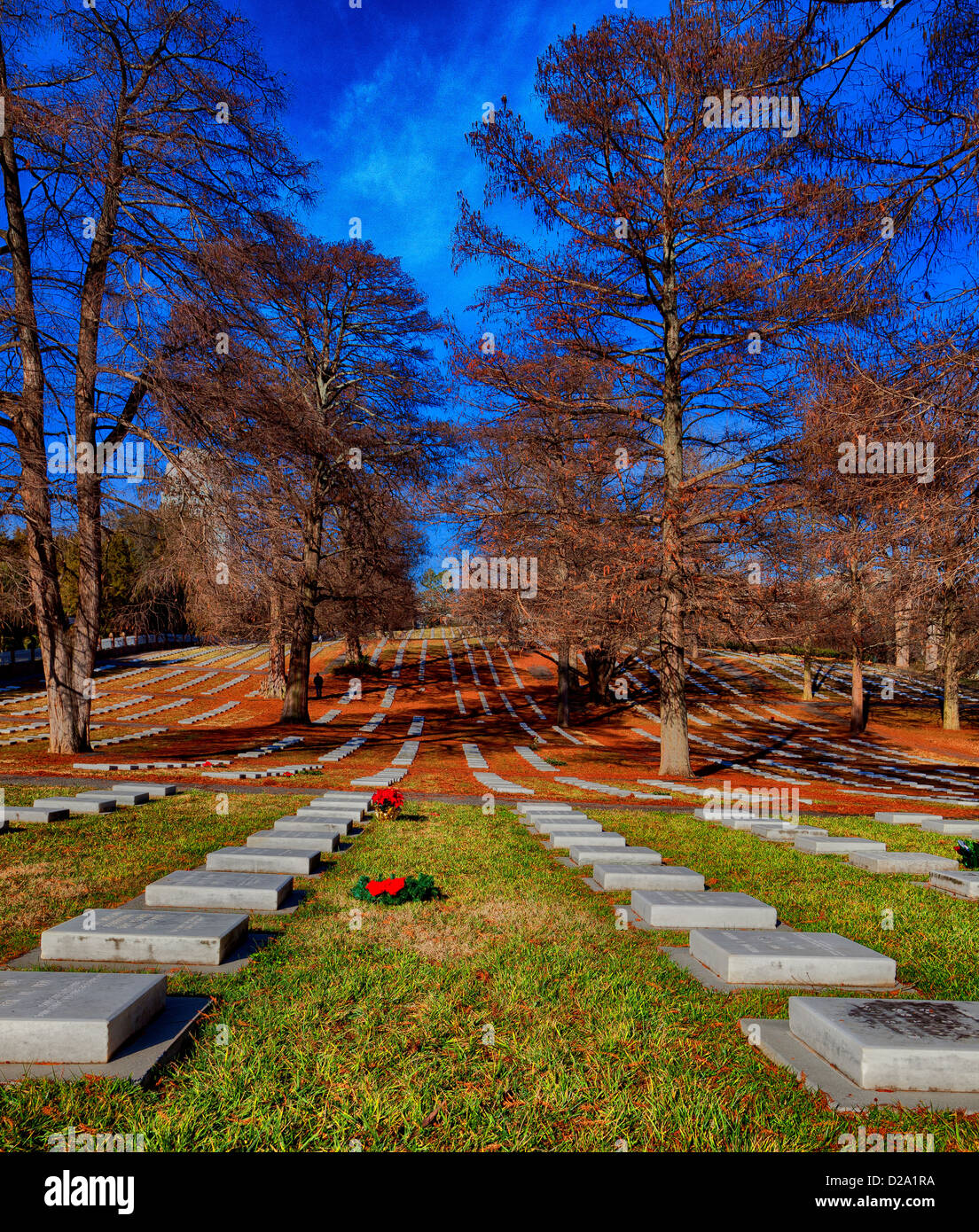 Rows of tombstones in a cemetery. - Stock Image