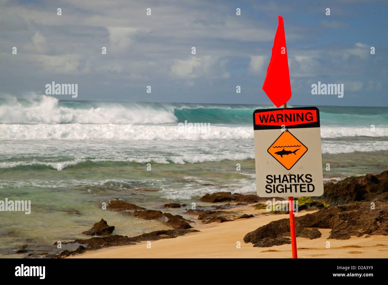 Hawaii, Oahu, North Shore. Shark Sighting Sign - Stock Image