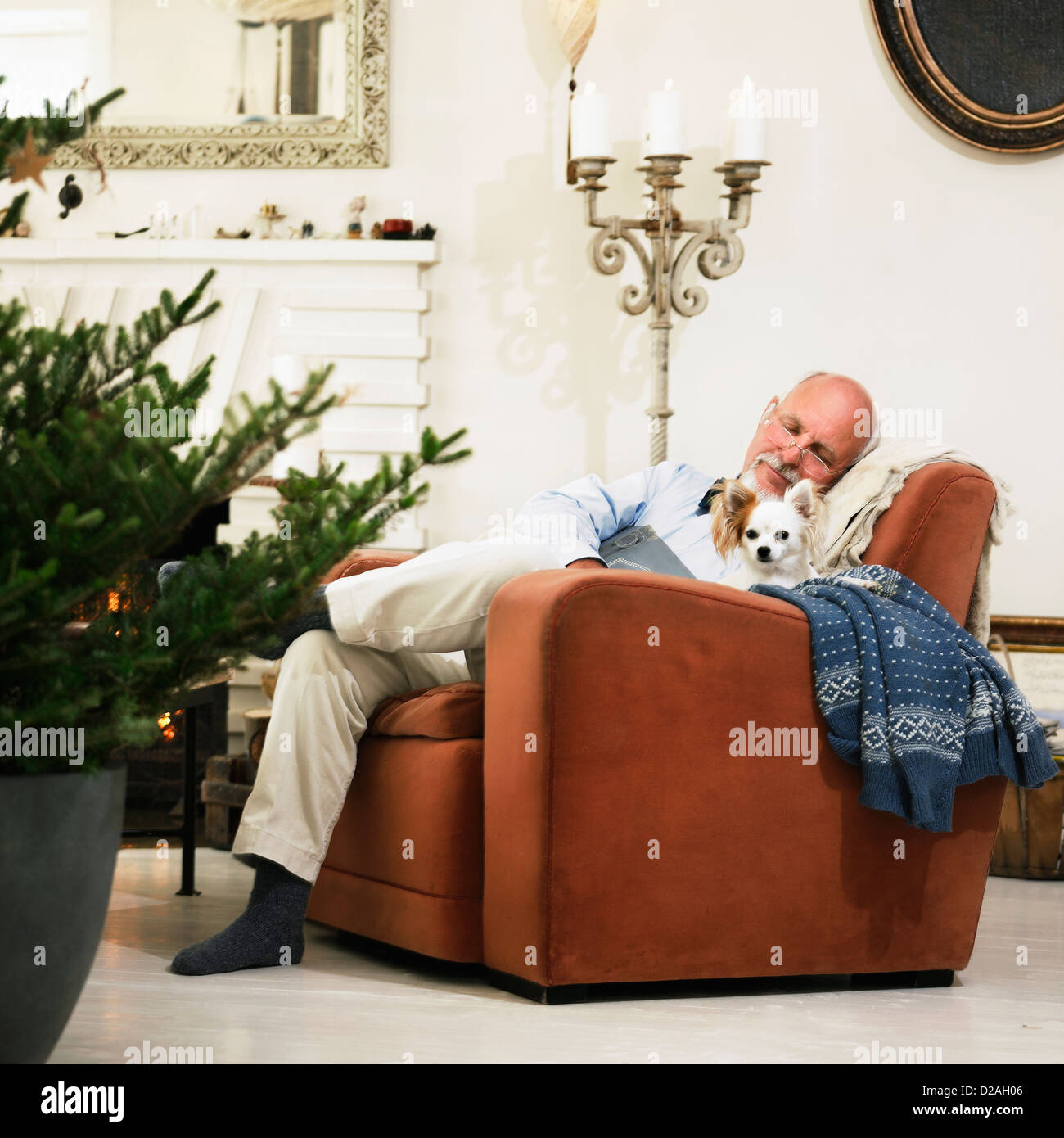 Older man sleeping by Christmas tree - Stock Image