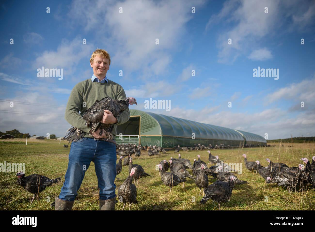 Farmer holding free range turkey - Stock Image