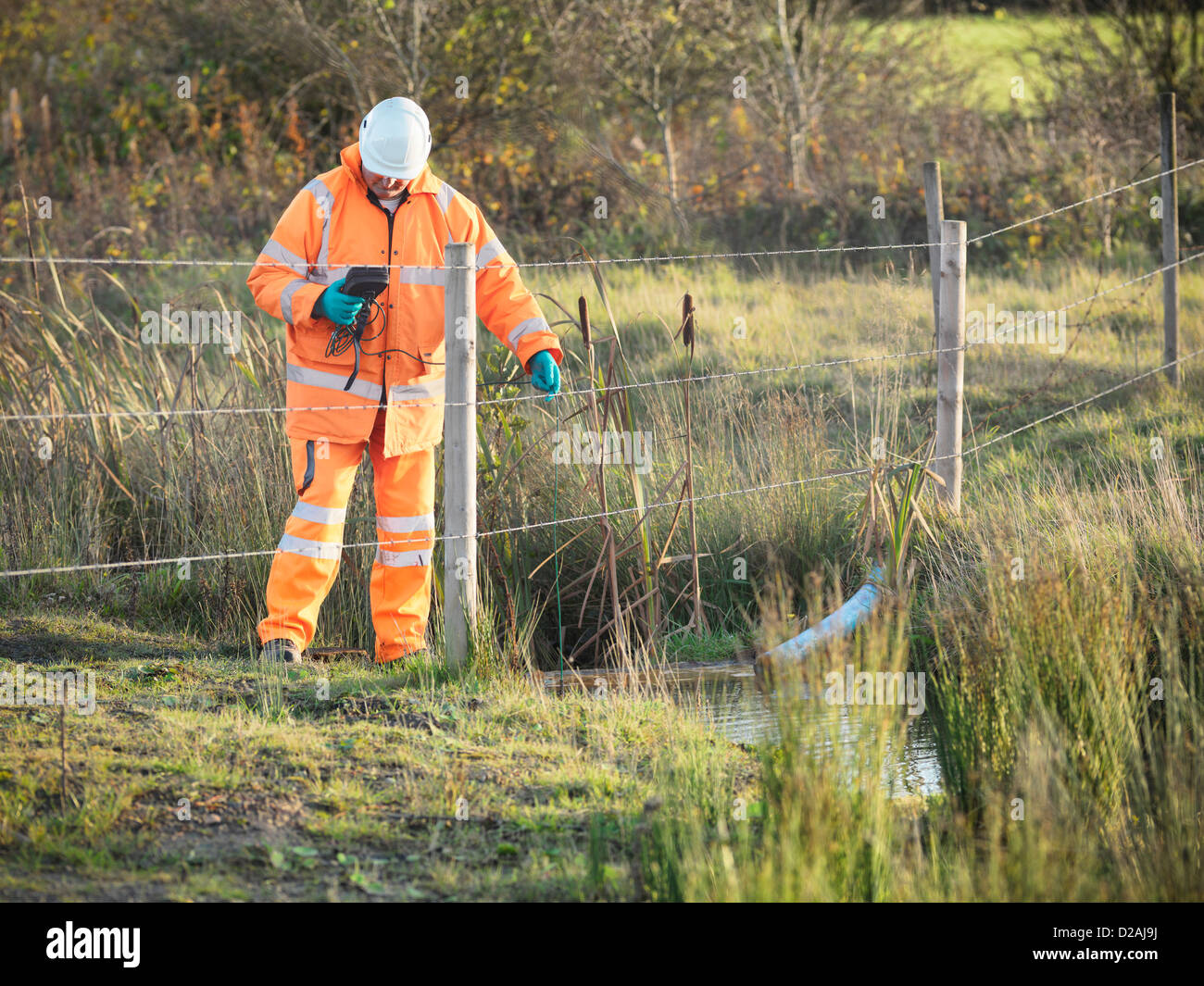 Ecologist examining water in creek - Stock Image