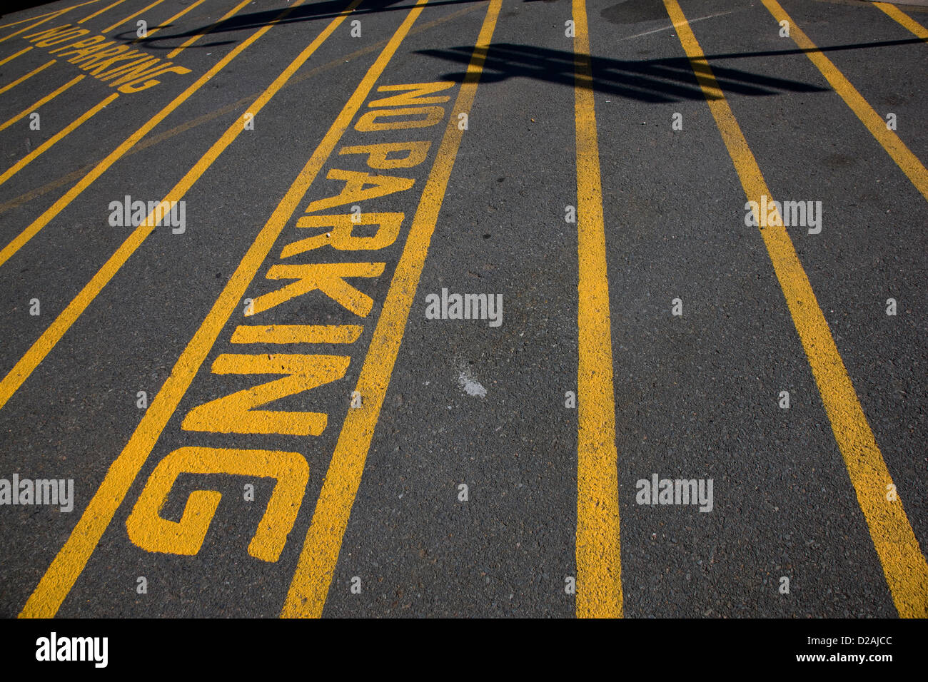 Yellow lines and road markings indicating 'No Parking' in Halifax, Nova Scotia - Stock Image
