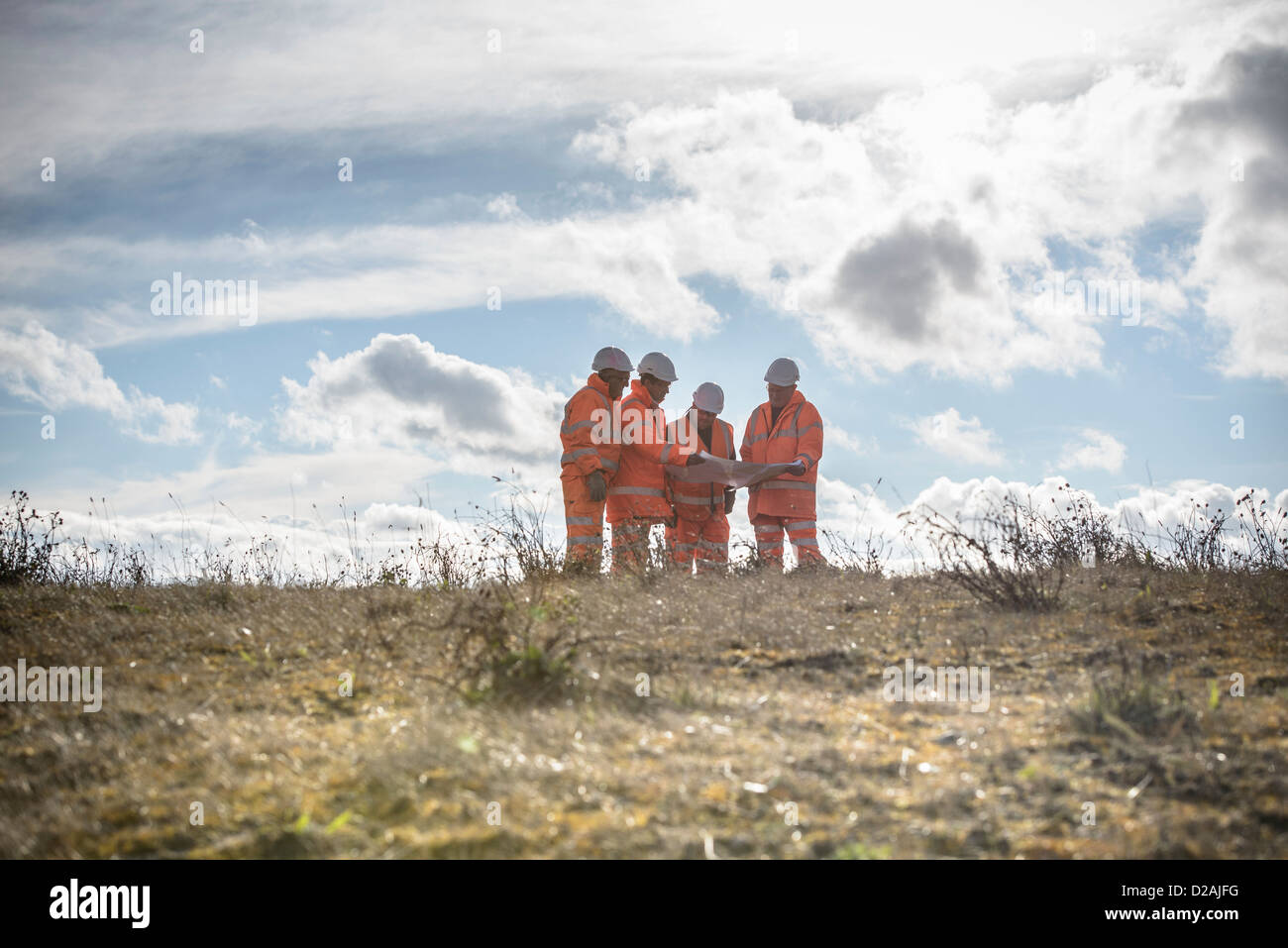 Workers reading blueprints in field - Stock Image
