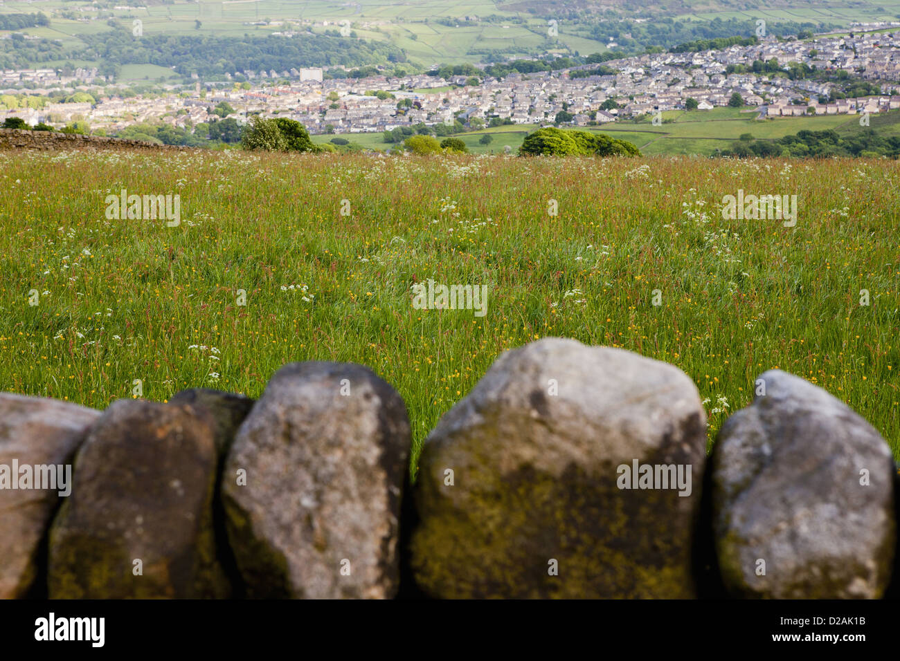 Stone wall in rural landscape - Stock Image