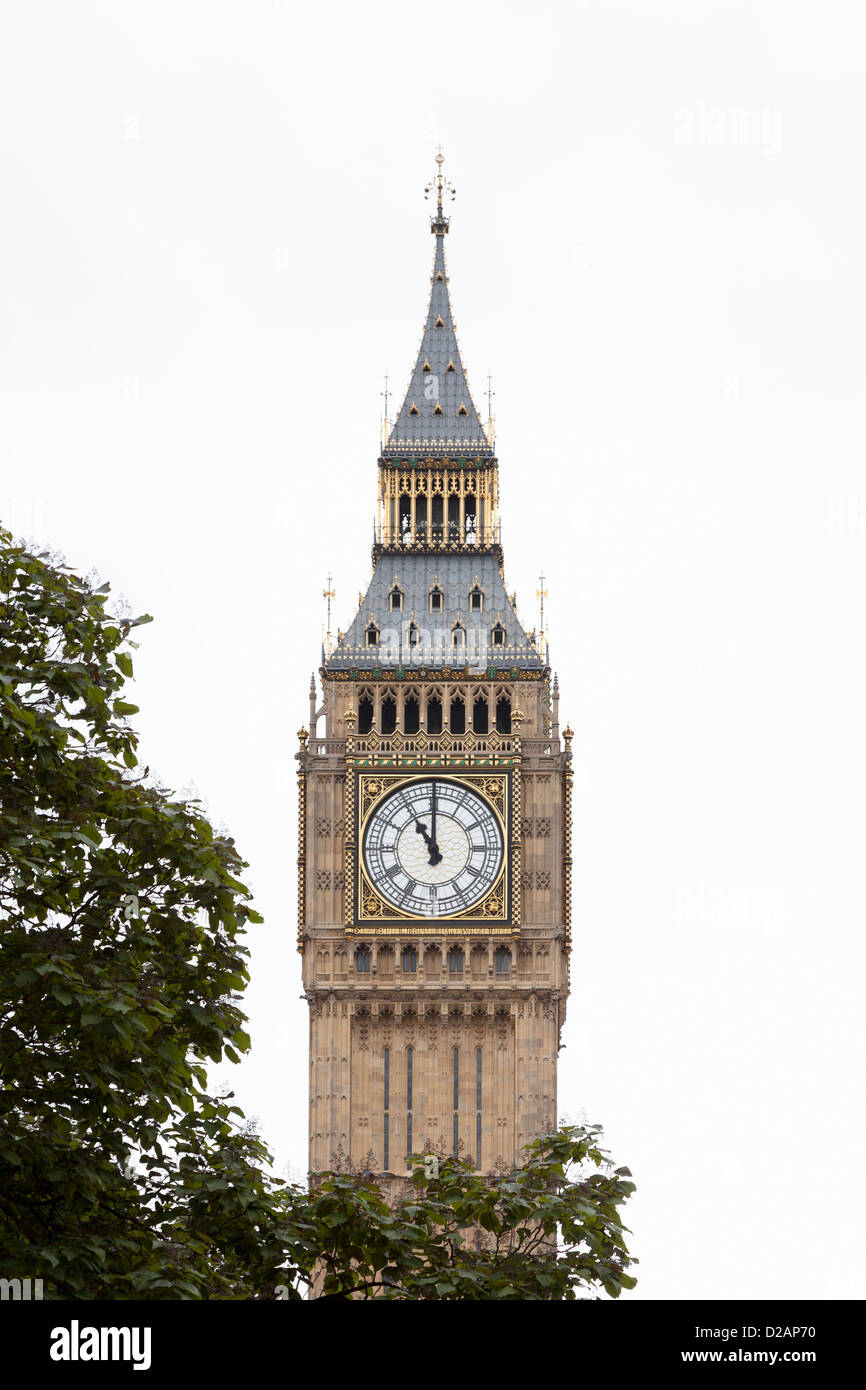 Big Ben clock tower with tree - Stock Image