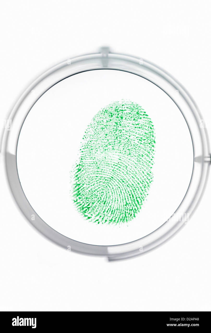Finger print being identified as a password to access information - Stock Image